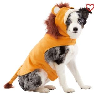 Dogs Lion Costume- Available In Various Sizes